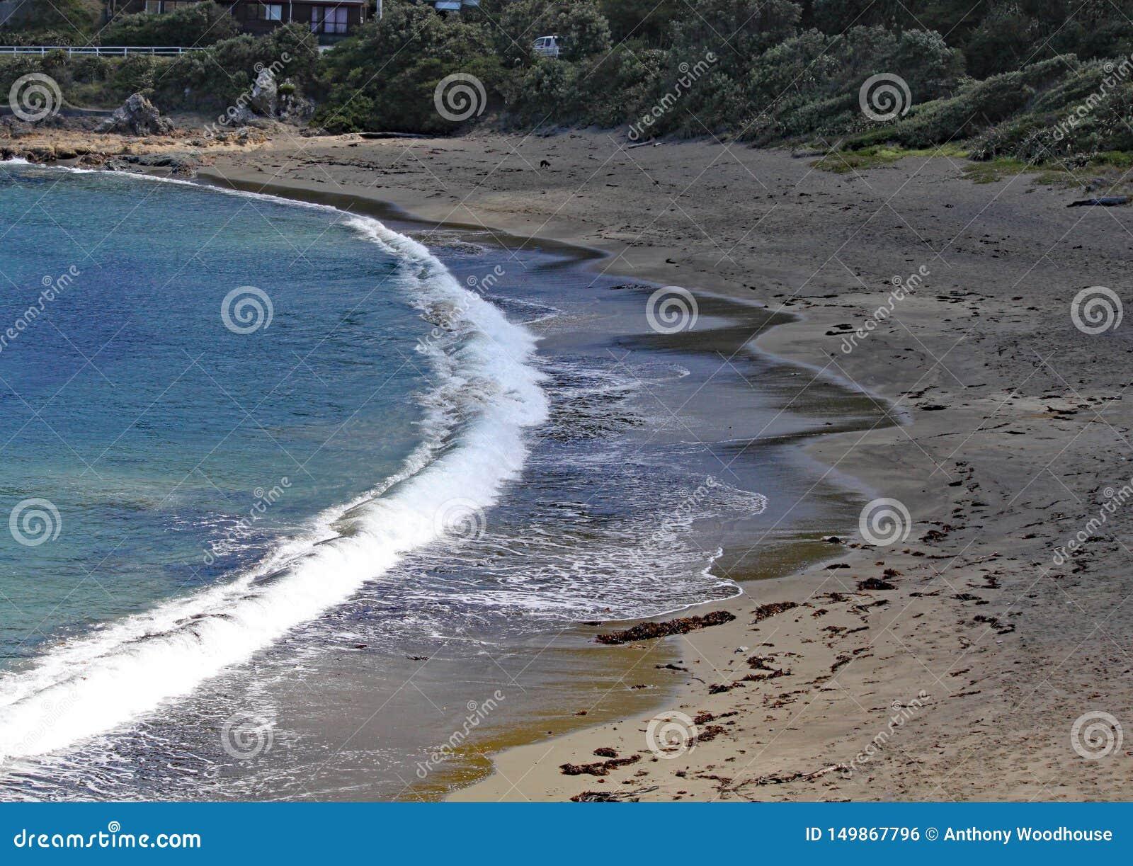 Een stille baai met golven die zacht op het strand dichtbij Wellington, Nieuw Zeeland wassen