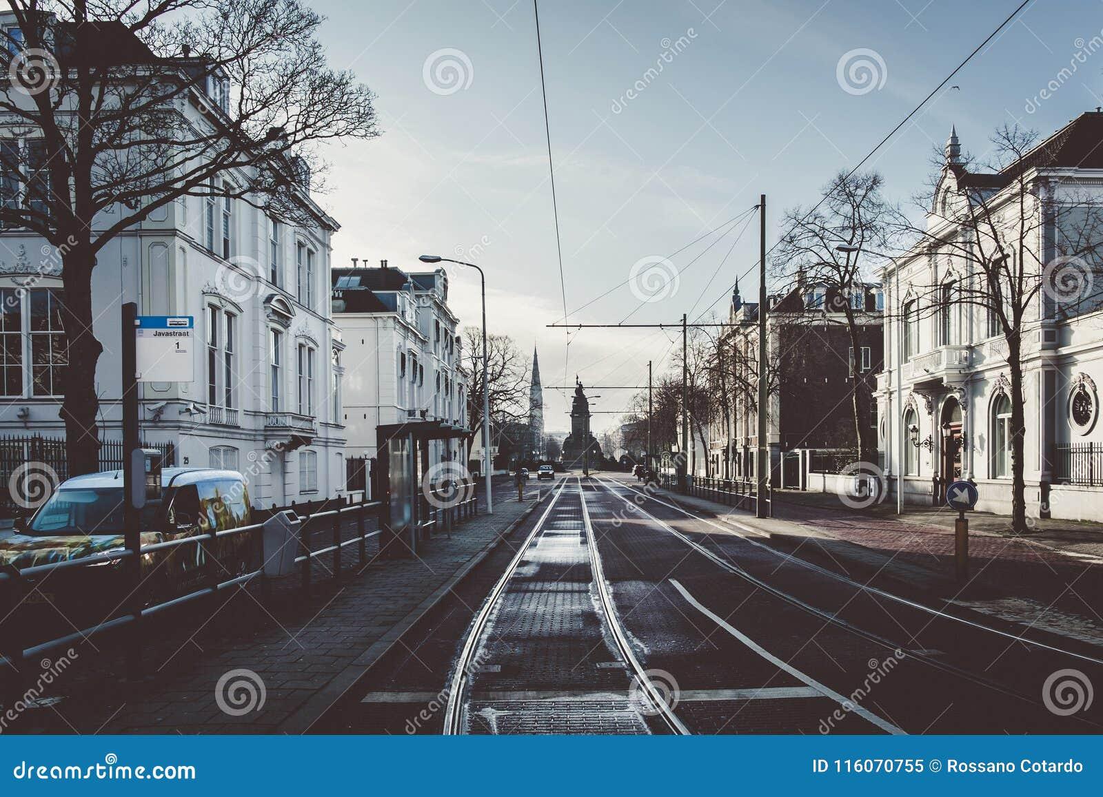 Een Straat in Den Haag
