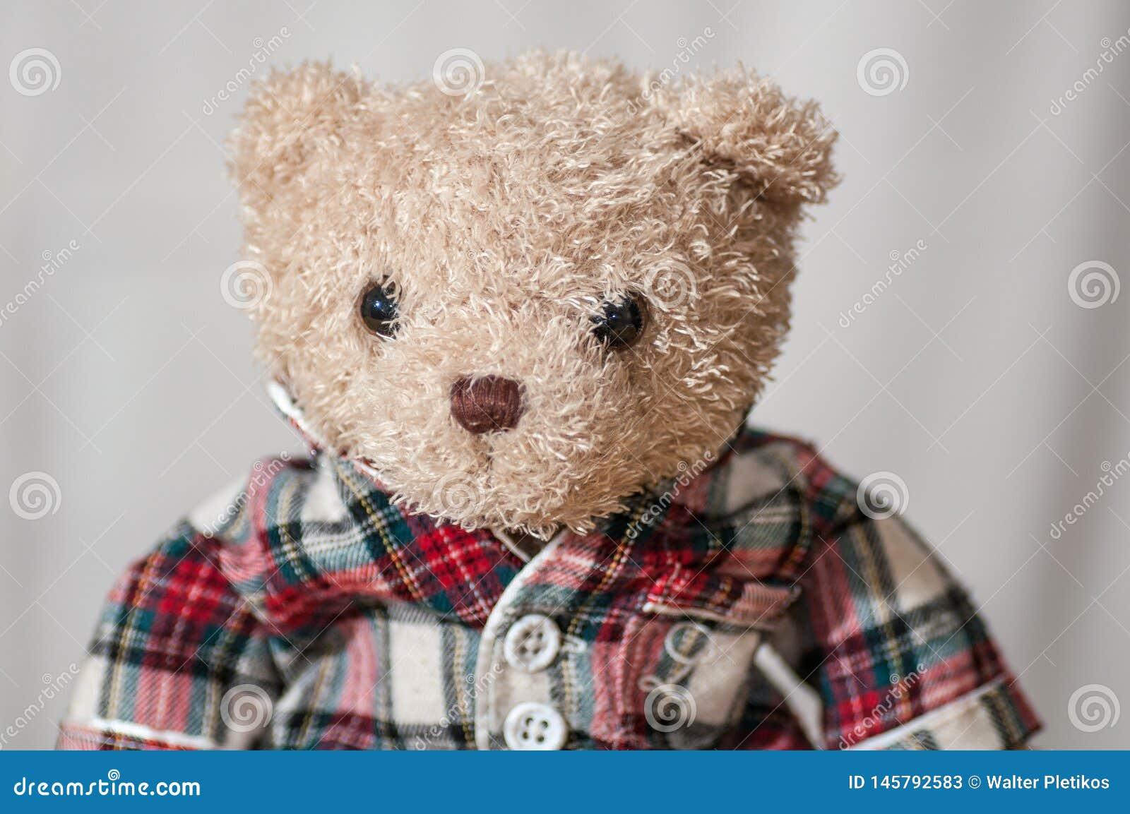 Een teddybeer met een overhemd