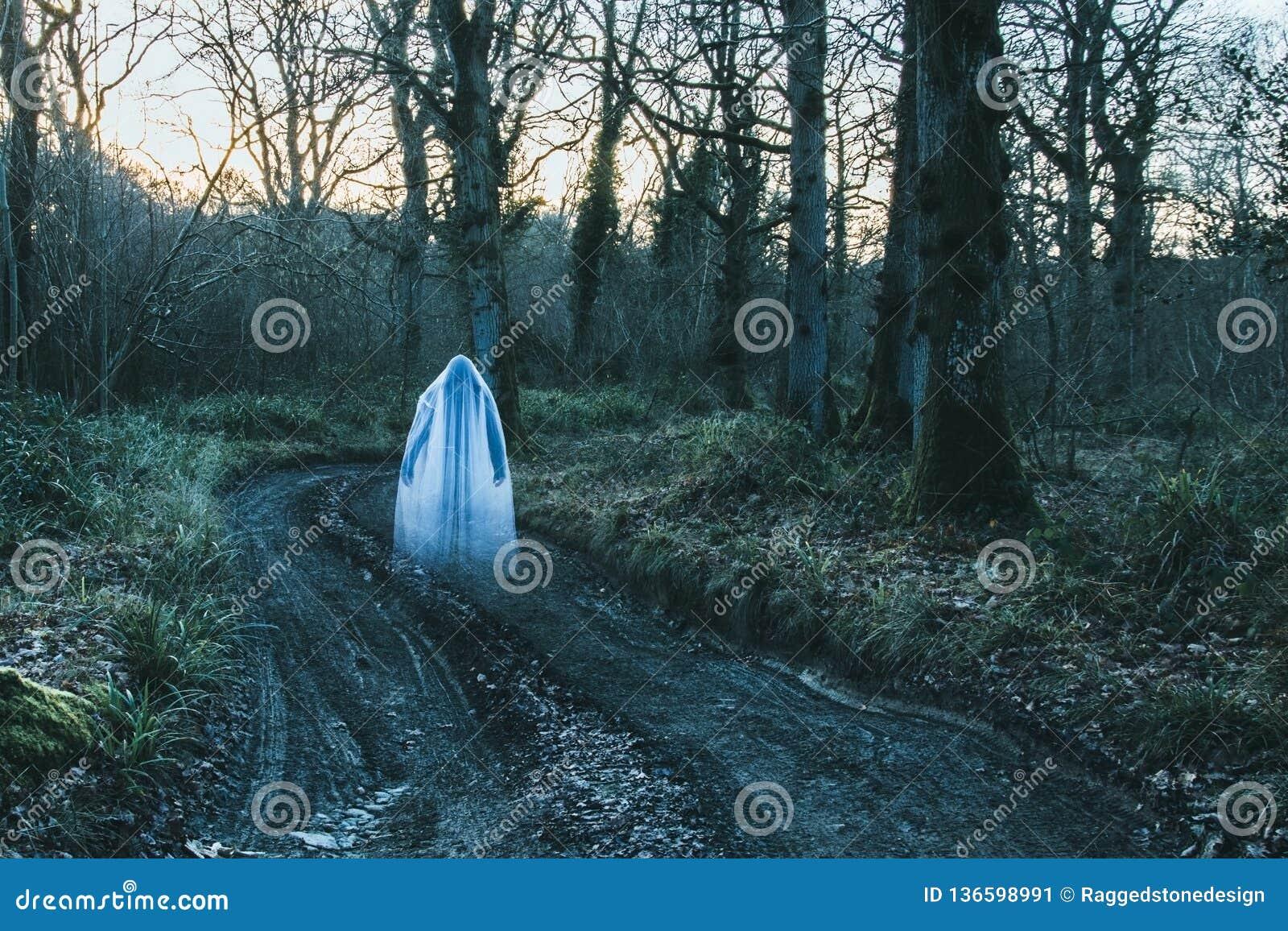 Een transparant vaag spookachtig cijfer die met een kap zich op een weg in een bos in de winter bevinden Met gedempt korrelig gee
