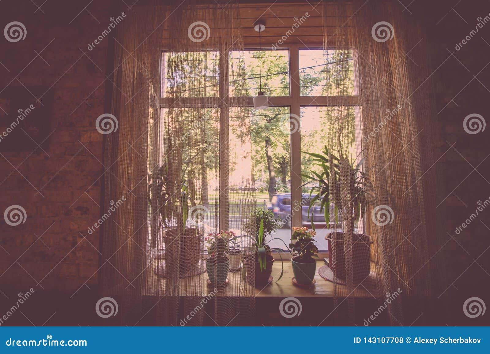 Een venster met gordijnen van één van de stadskoffie in de stijl van een inschrijving
