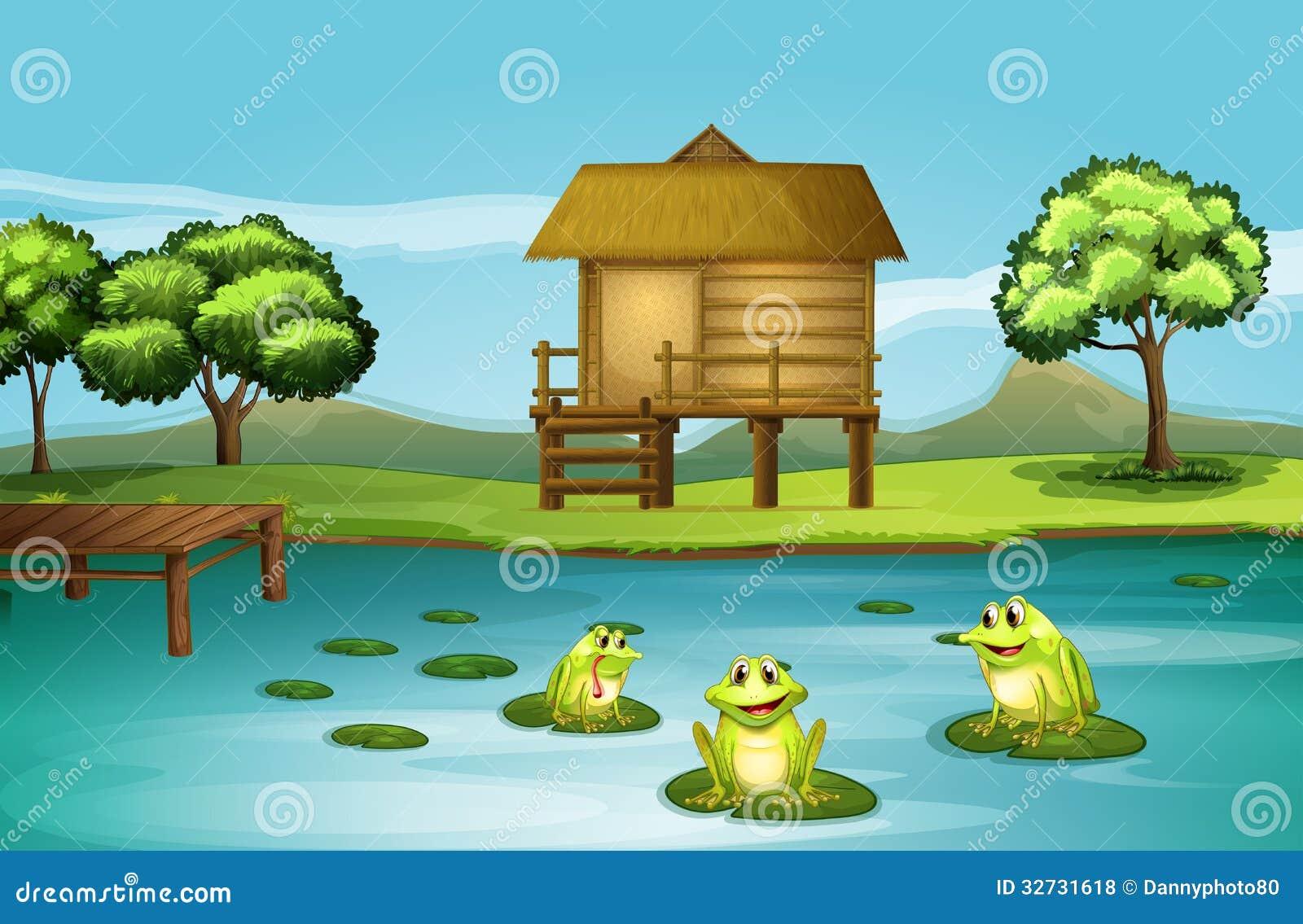 een vijver met drie speelse kikkers vector illustratie afbeelding 32731618 Cute Frogs Frog Illustration