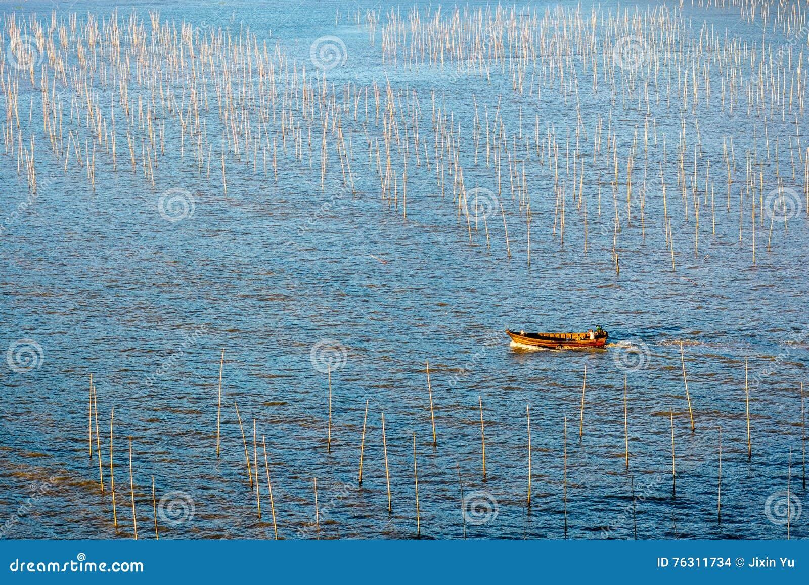 Een visser die door de kust intertidal streek van Xiapu gaan