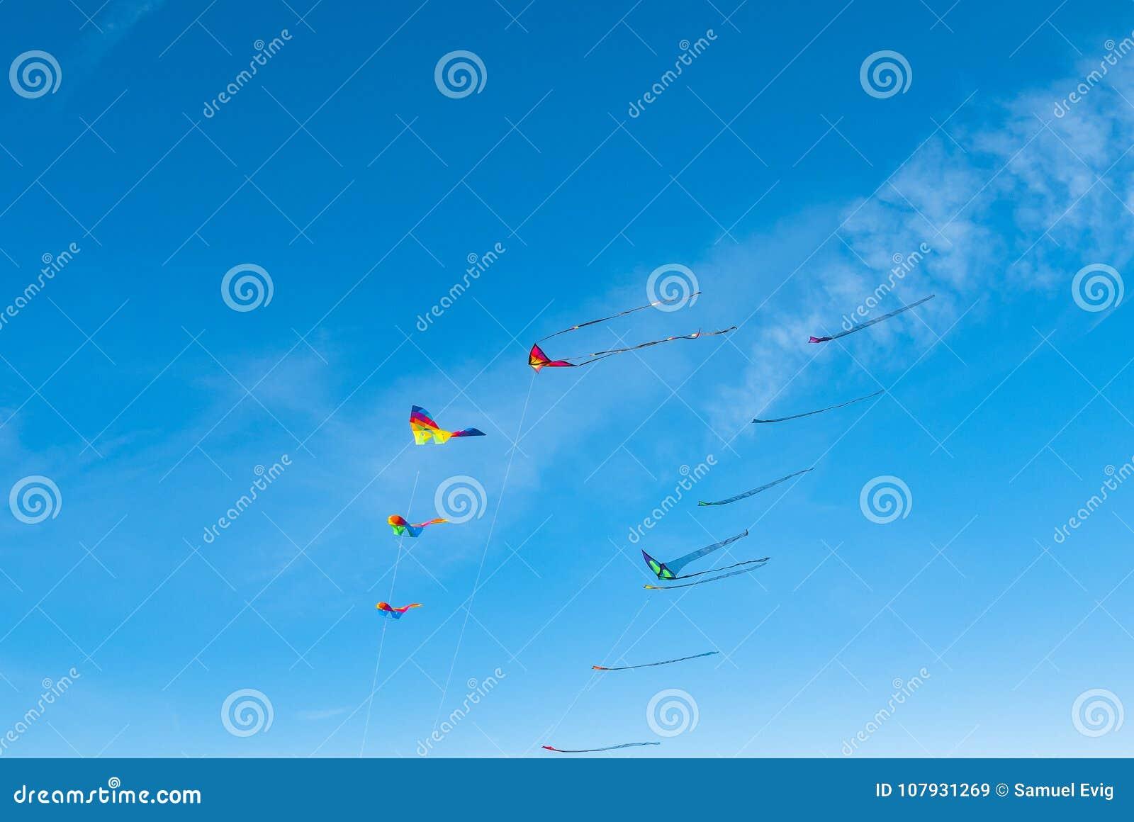 Een vloot van vliegers
