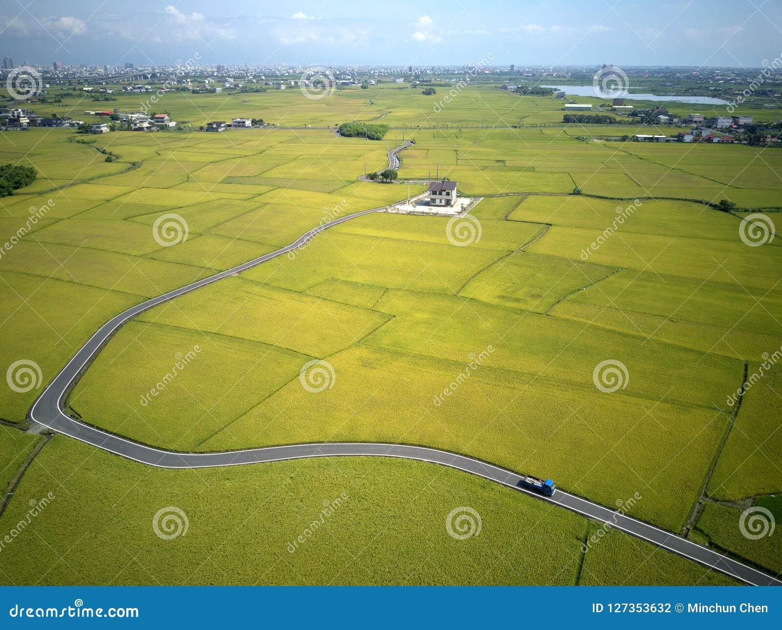 Een vogelperspectief van een curvy landweg die door gouden padievelden in Yilan Ilan winden