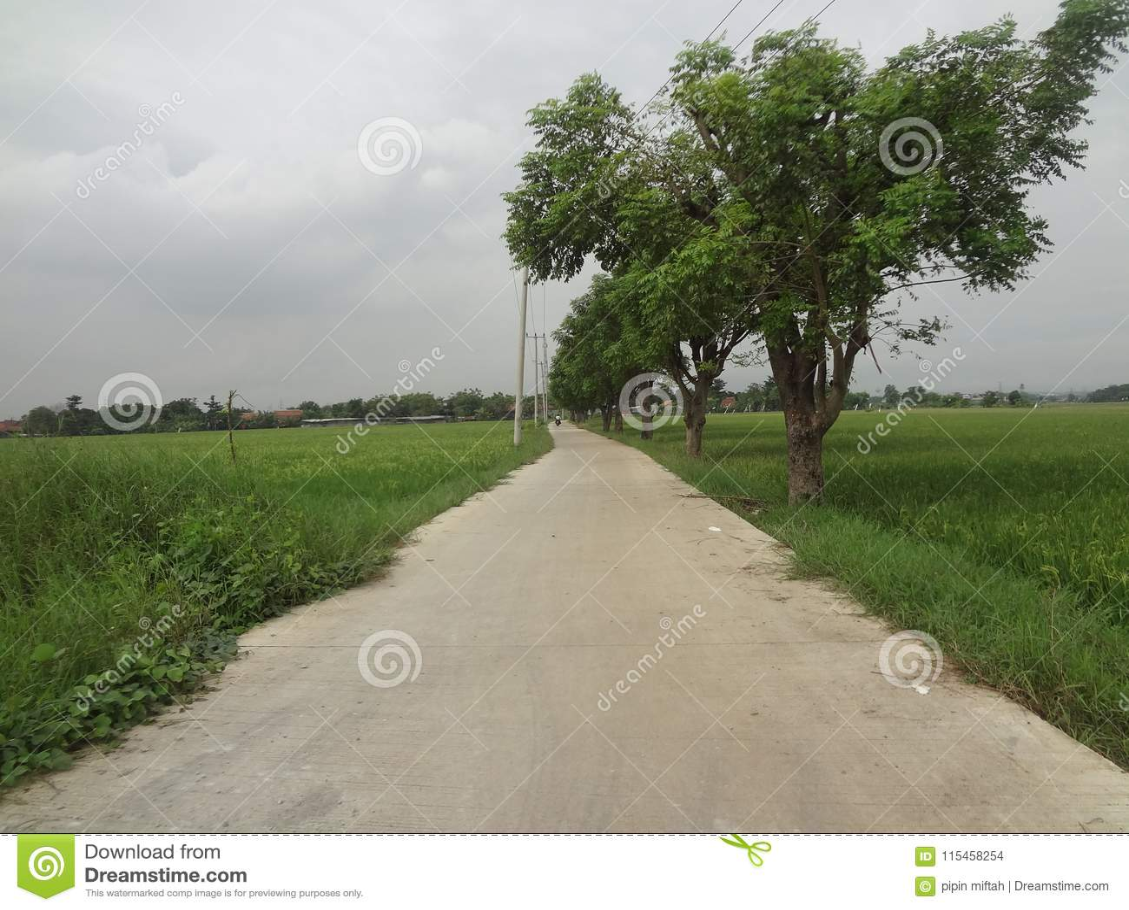 Een vrij straat