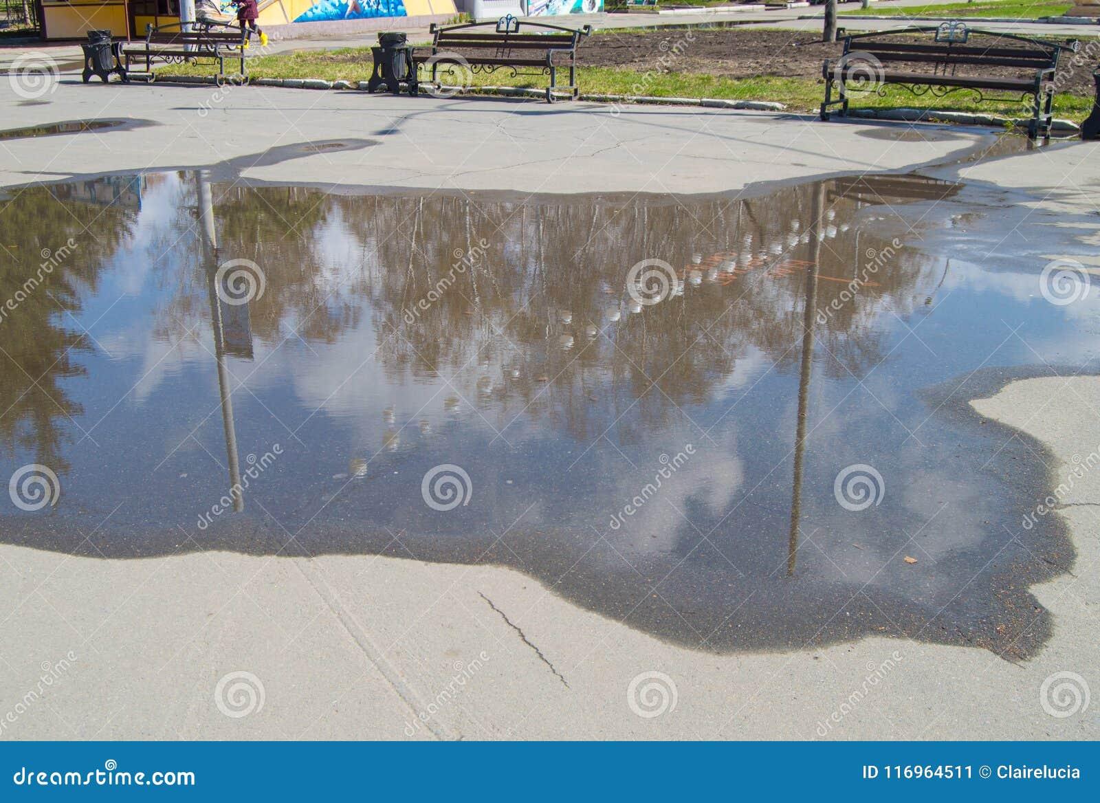 In een vulklei van asfalt weerspiegeld de hemel met wolken en bomen in het Park