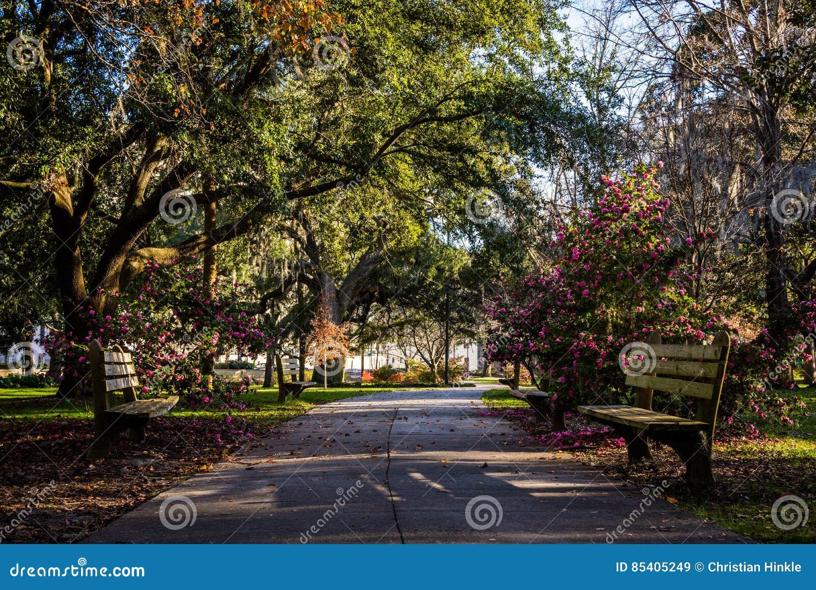 Een Warme dag bij Forsyth-Park in Savanne, Georgia Shaded door Magnol