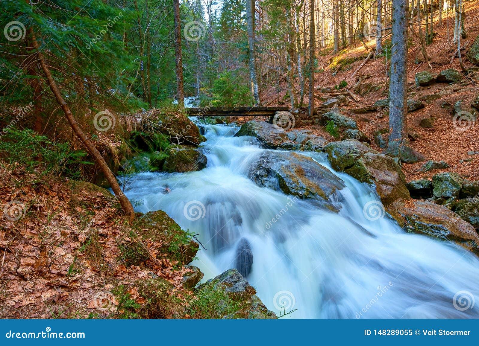 Een waterval in het bos