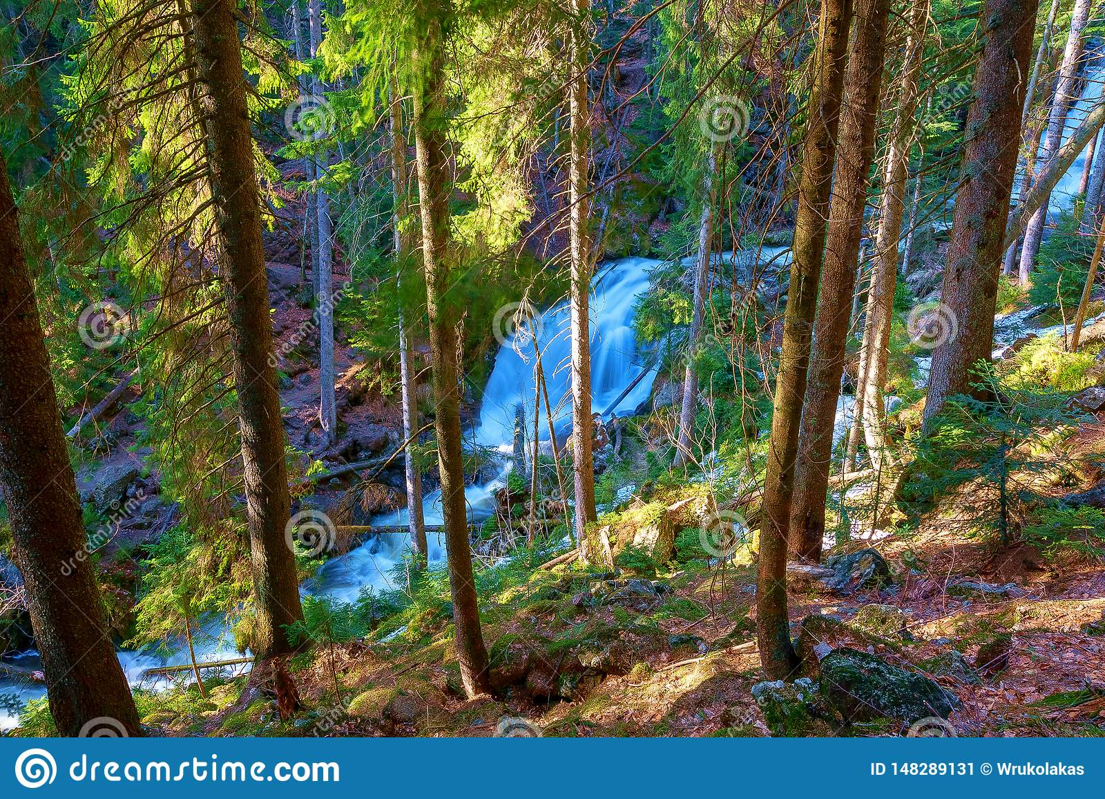 Een wilde stroom kruist het Beierse bos