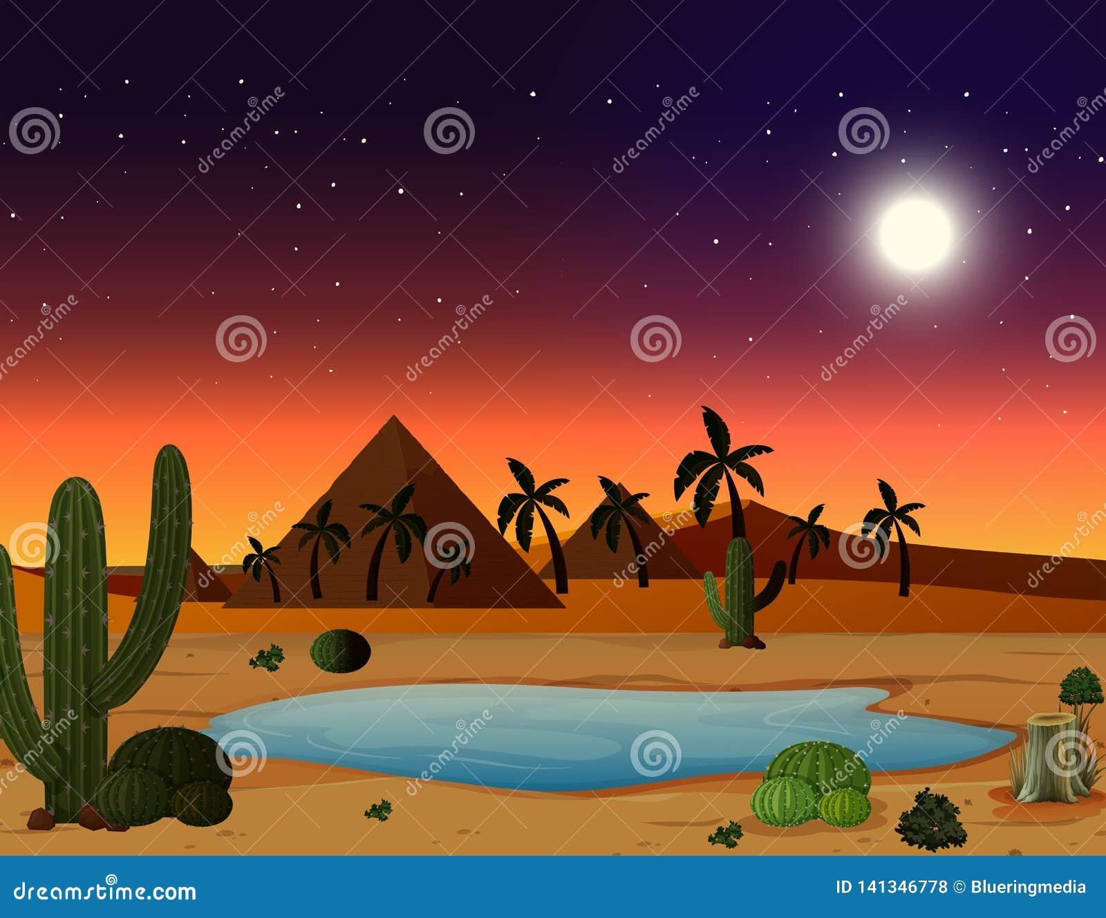 Een woestijnscène bij nacht