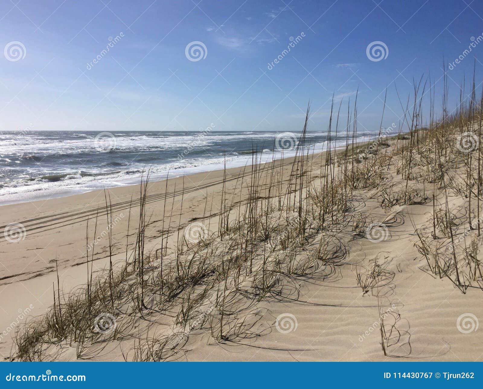 Een zonnige dag bij het strand