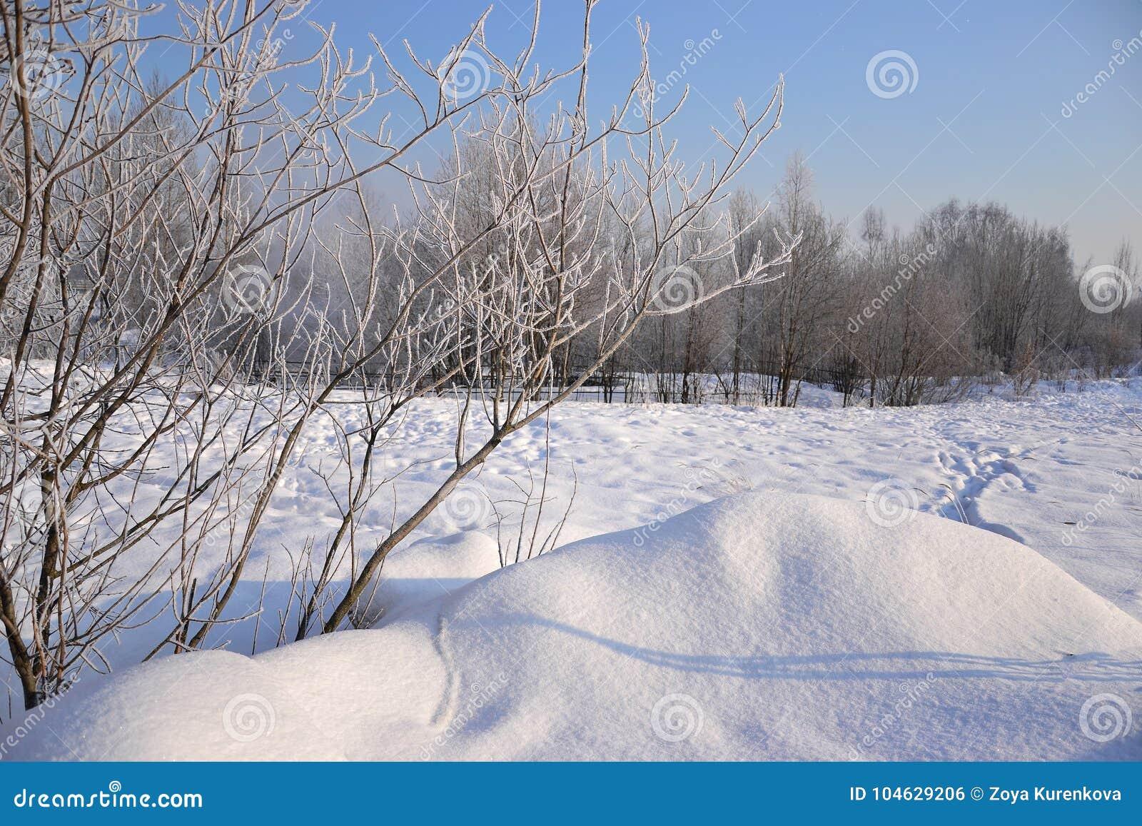Download Een Zonnige De Winterdag Heilige-Petersburg Visserij Stock Foto - Afbeelding bestaande uit vorst, koude: 104629206