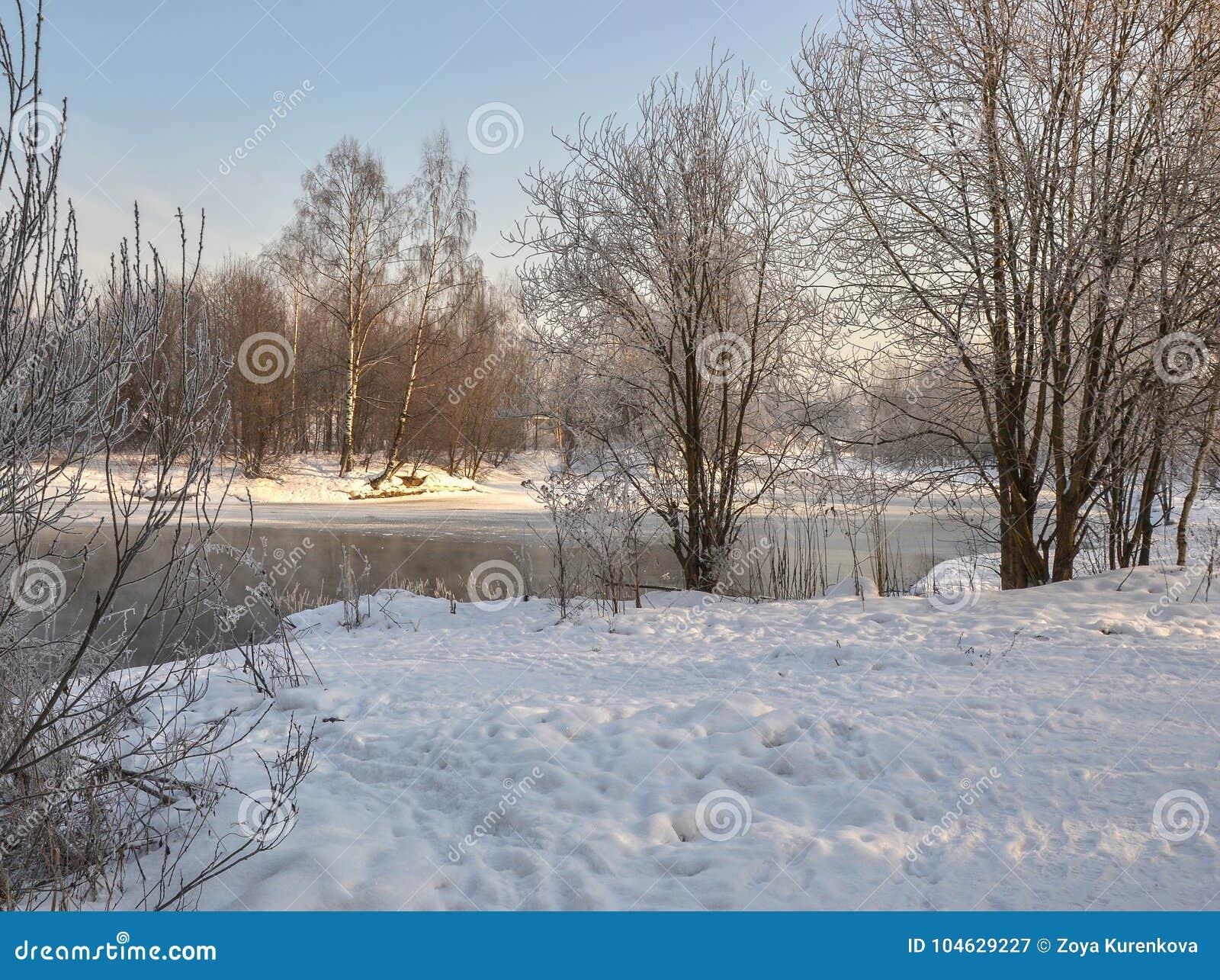 Download Een Zonnige De Winterdag Heilige-Petersburg Visserij Stock Afbeelding - Afbeelding bestaande uit seizoen, bezinning: 104629227