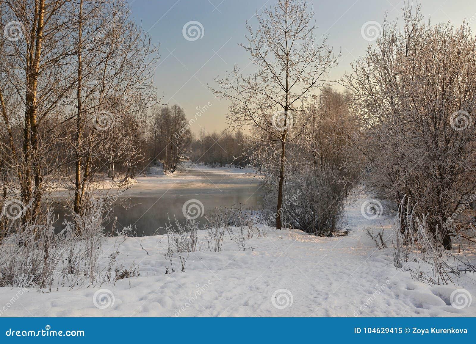 Download Een Zonnige De Winterdag Heilige-Petersburg Visserij Stock Afbeelding - Afbeelding bestaande uit nave, winter: 104629415