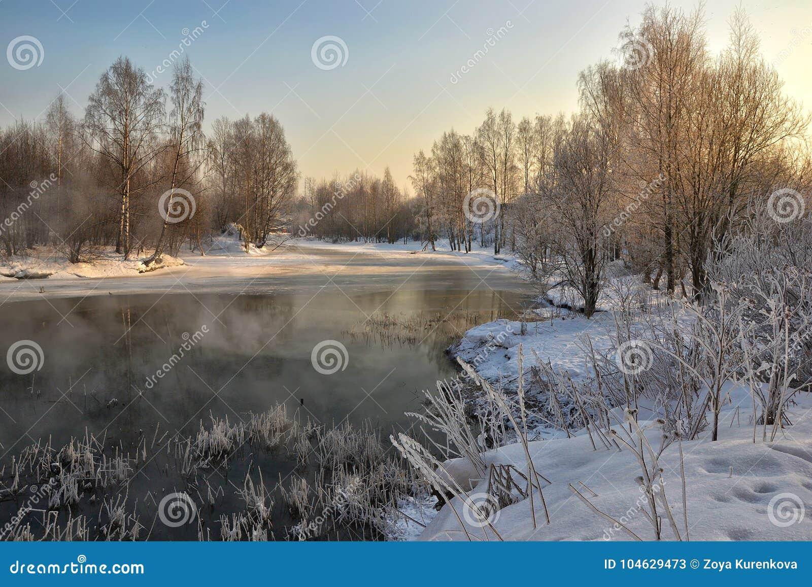 Download Een Zonnige De Winterdag Heilige-Petersburg Visserij Stock Afbeelding - Afbeelding bestaande uit zonnig, visserij: 104629473