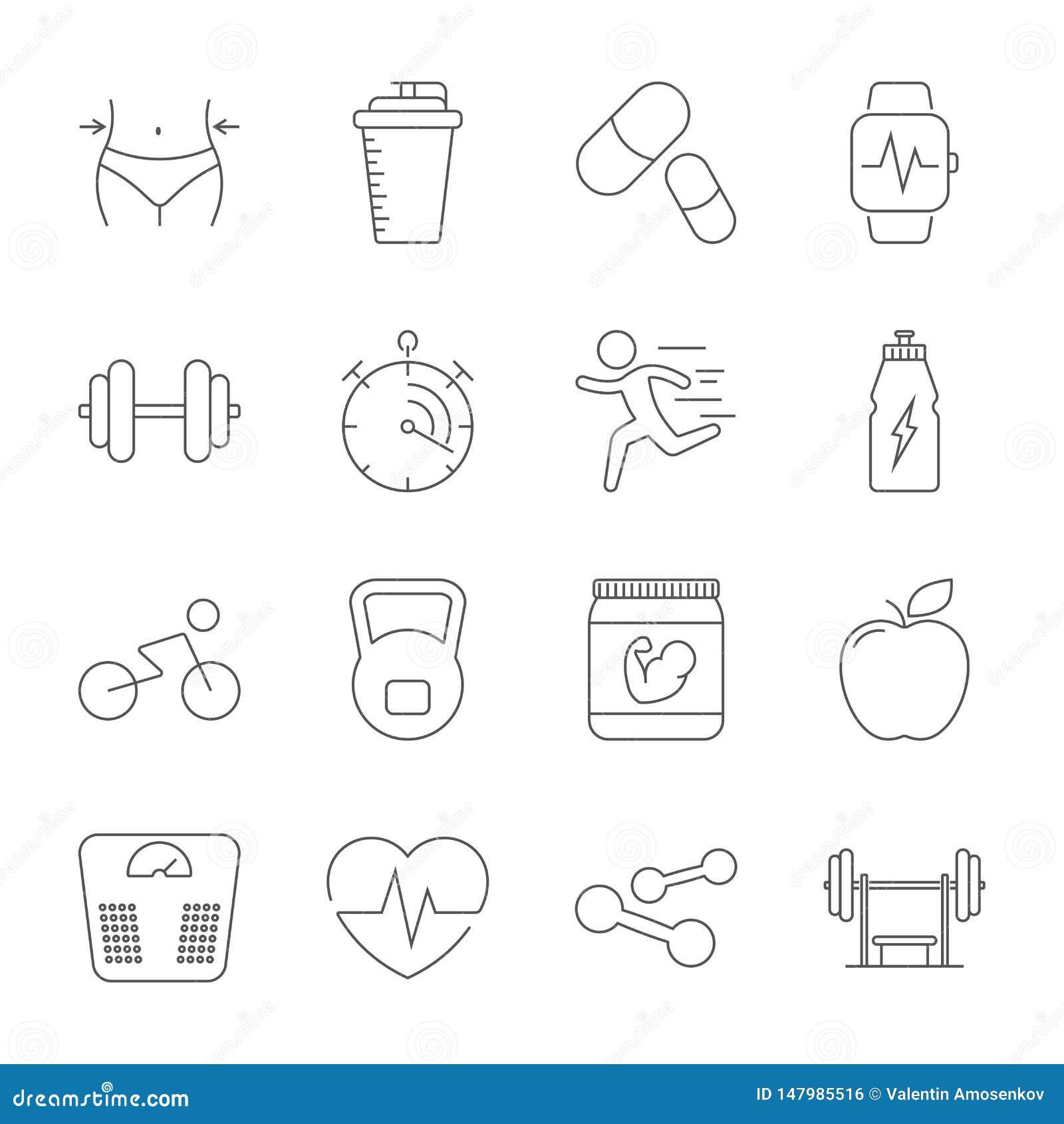 Eenvoudige vastgestelde sport, fitness, pictogrammen van de gymnastiek de materiaal verwante vectorlijn Geschiktheid opleiding, h
