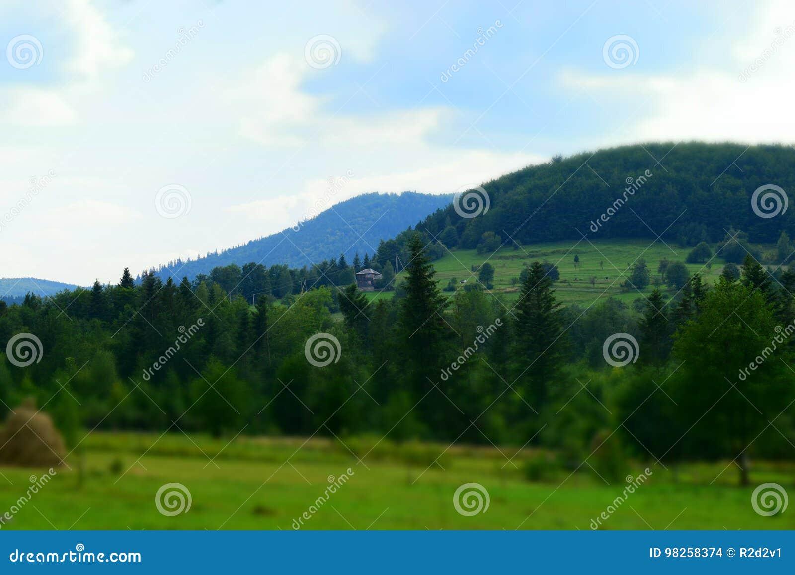 Eenzaam huis op een heuvel