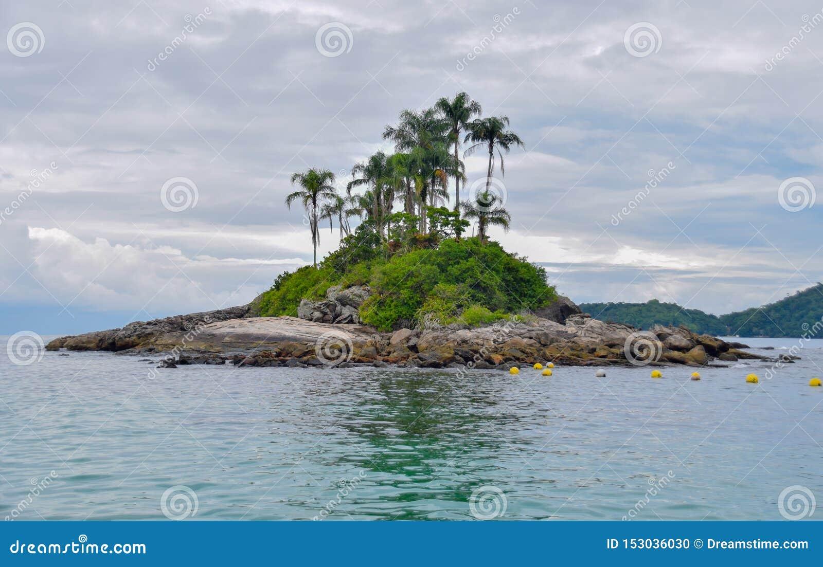 Eenzaam tropisch eiland in de oceaan met rotsen en palmen