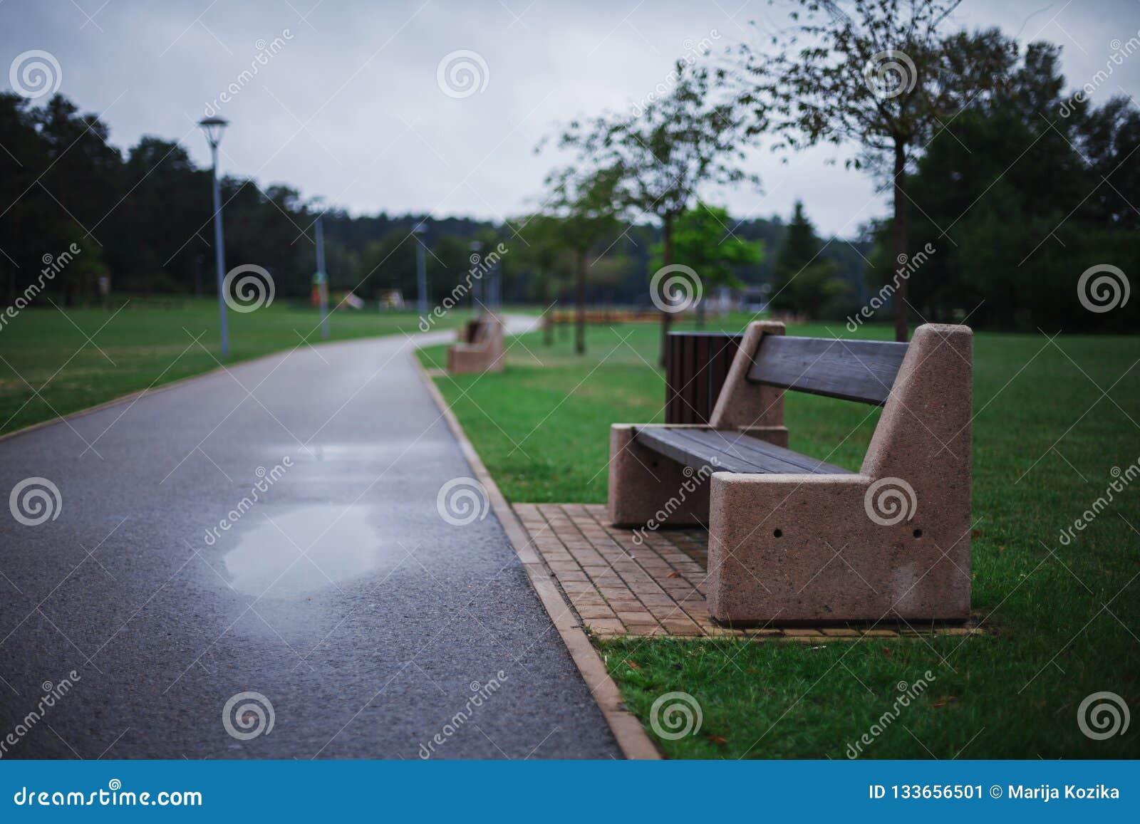 Eenzame moderne minimalistische die bank van concreet en houten in een gr. wordt gemaakt