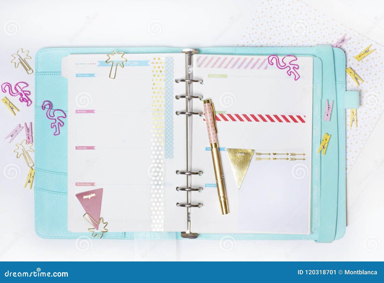 Efectos de escritorio femeninos: la carpeta de papel colorida acorta la palma y el flamin