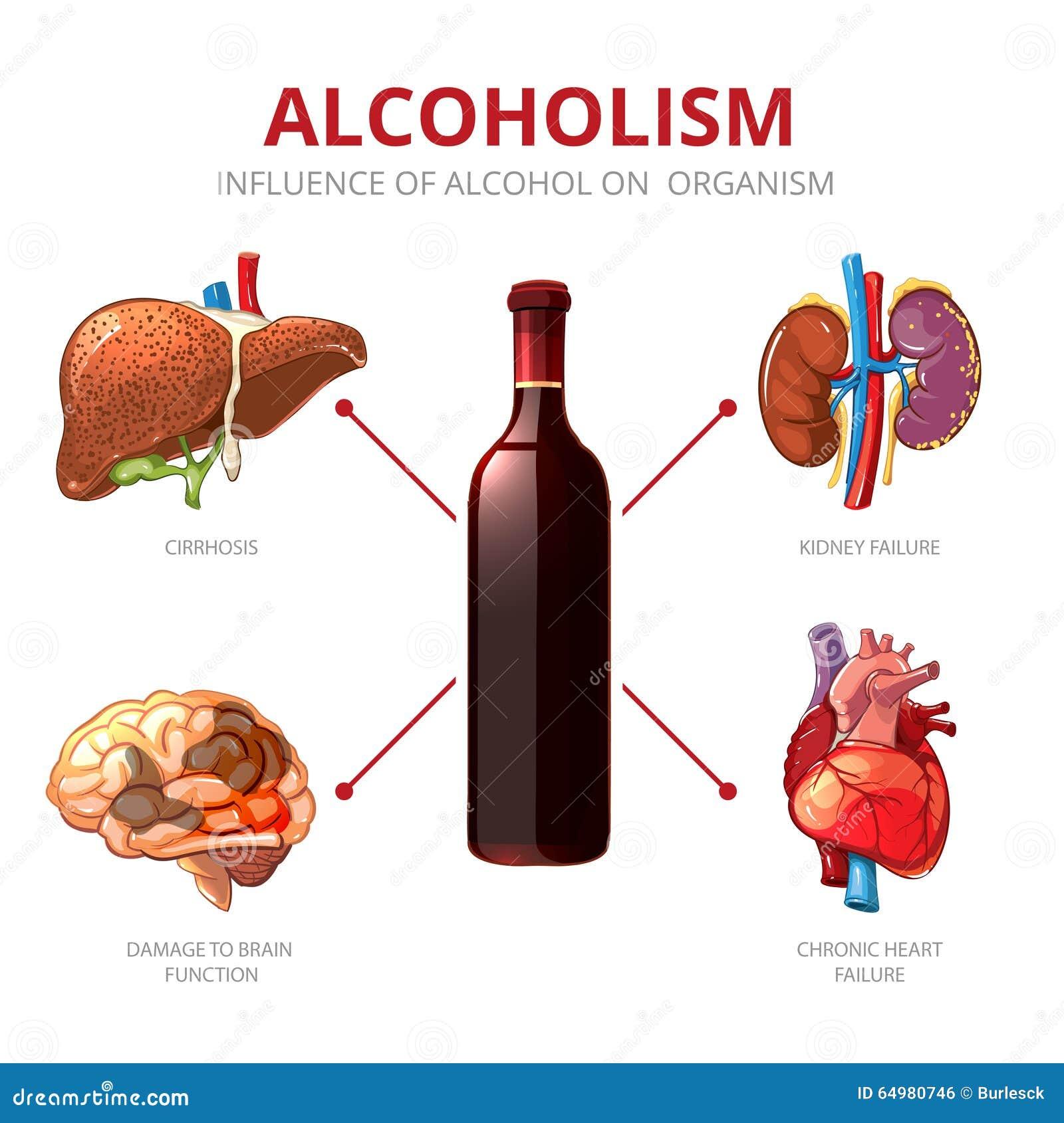 efectos inmediatos y a largo plazo que produce el alcohol en el organismo