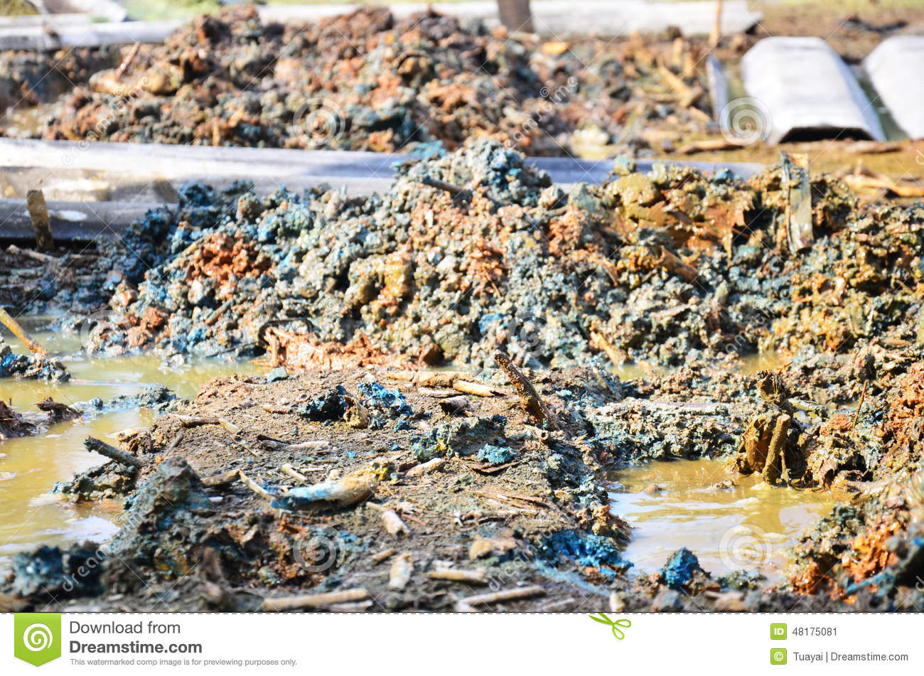 Effects environmental from chemicals and heavy metals in for What substances are in soil