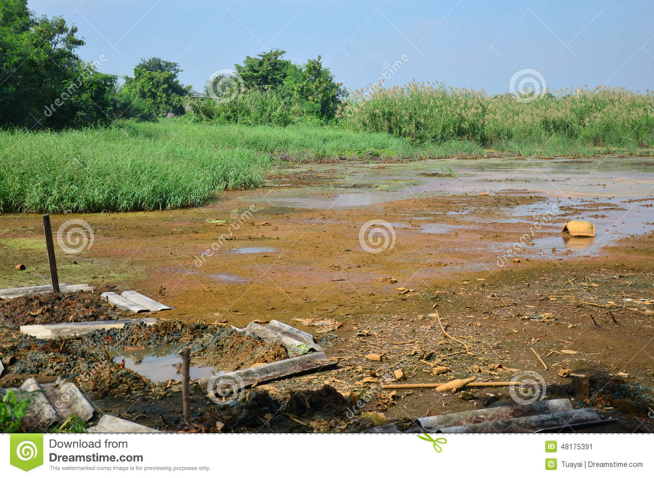 the effects of heavy metals in Effects of heavy metals on soil enzymatic activities in the ishiagu mining area of ebonyi state wwwiosrjournalsorg 67 | page.