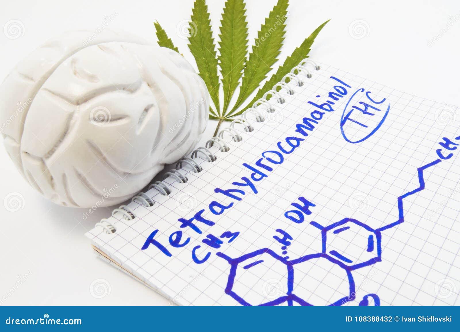 Effekte Und Aktion Von Tetrahydrocannabinol THC Auf Menschlichem ...