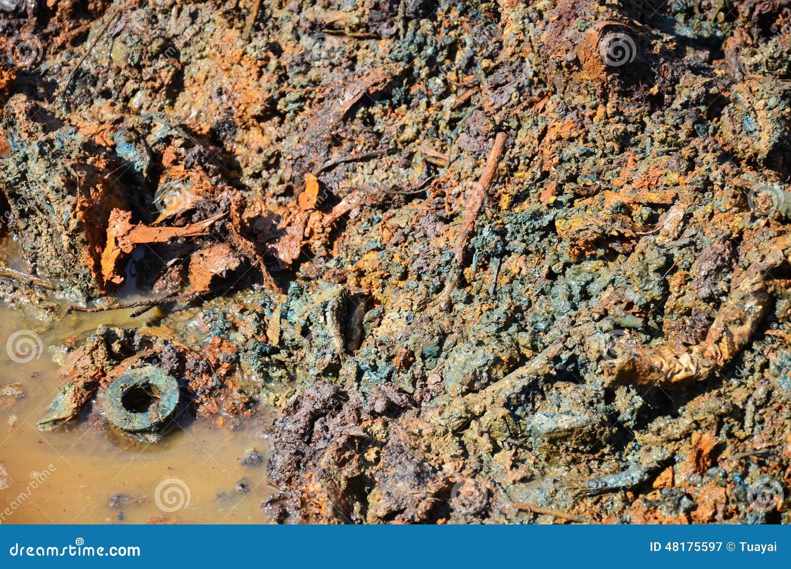 Effets de l environnement des produits chimiques et des métaux lourds dans le sol