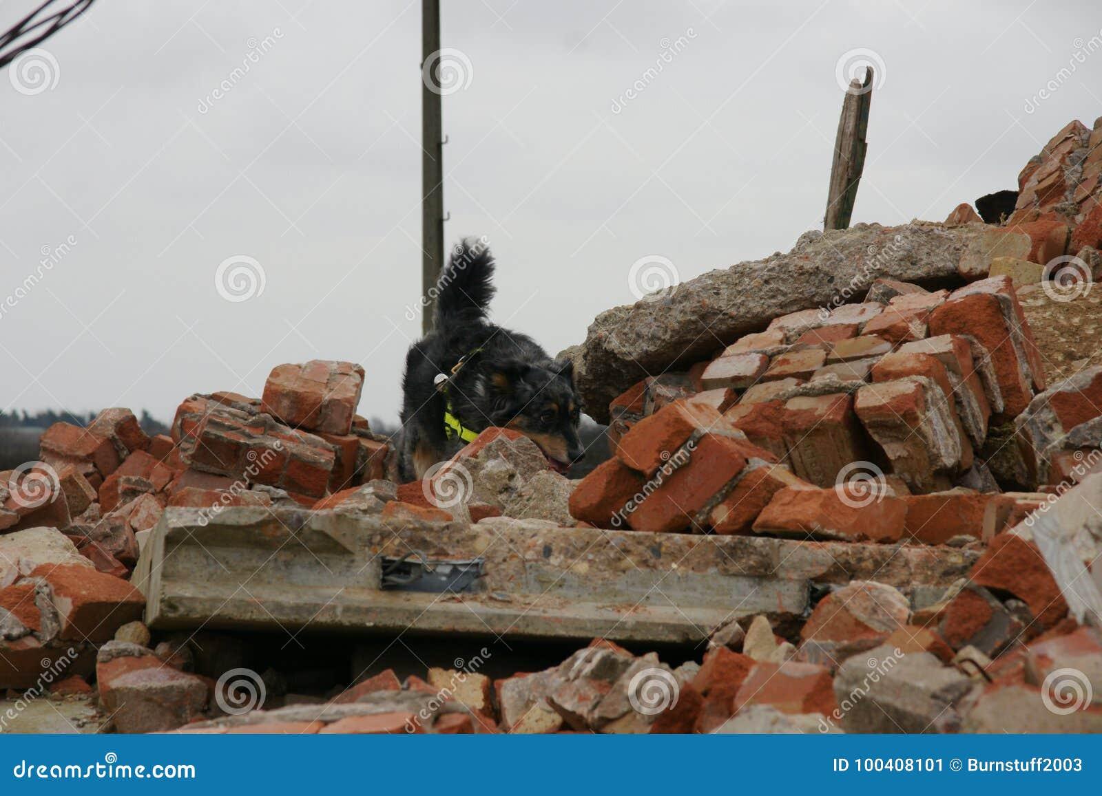 Effondrement de construction, zone de catastrophe