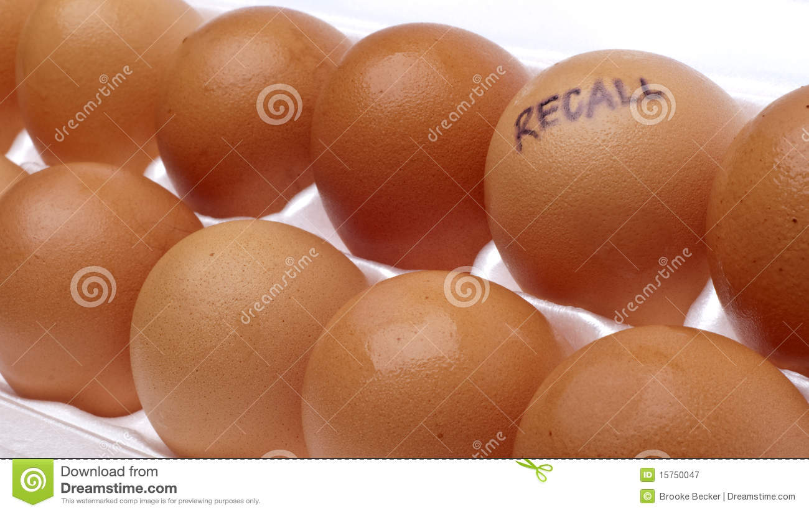 egg recall - photo #40