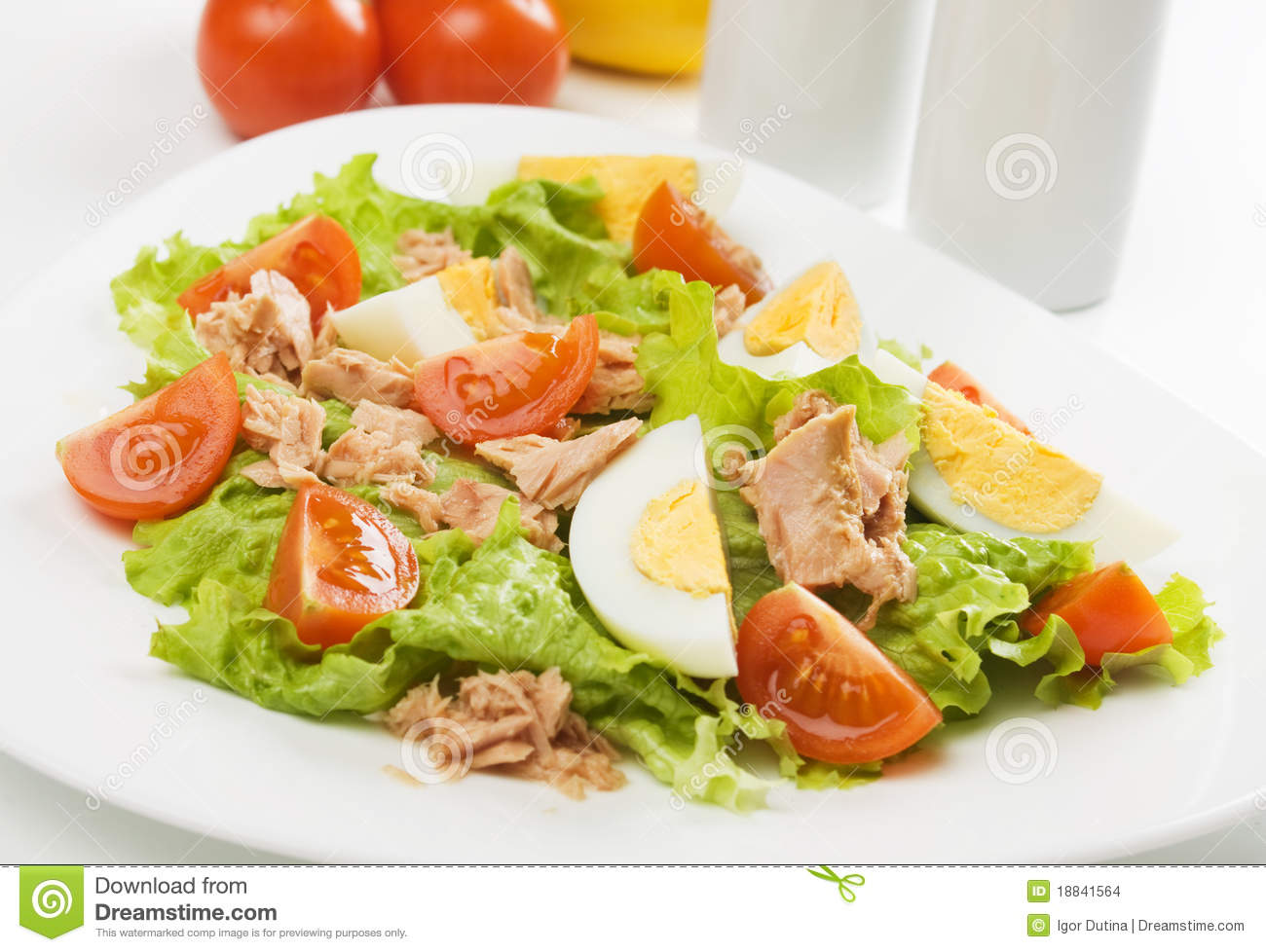Egg and tuna salad stock photo image of meal photograph for Tuna fish salad recipe with egg