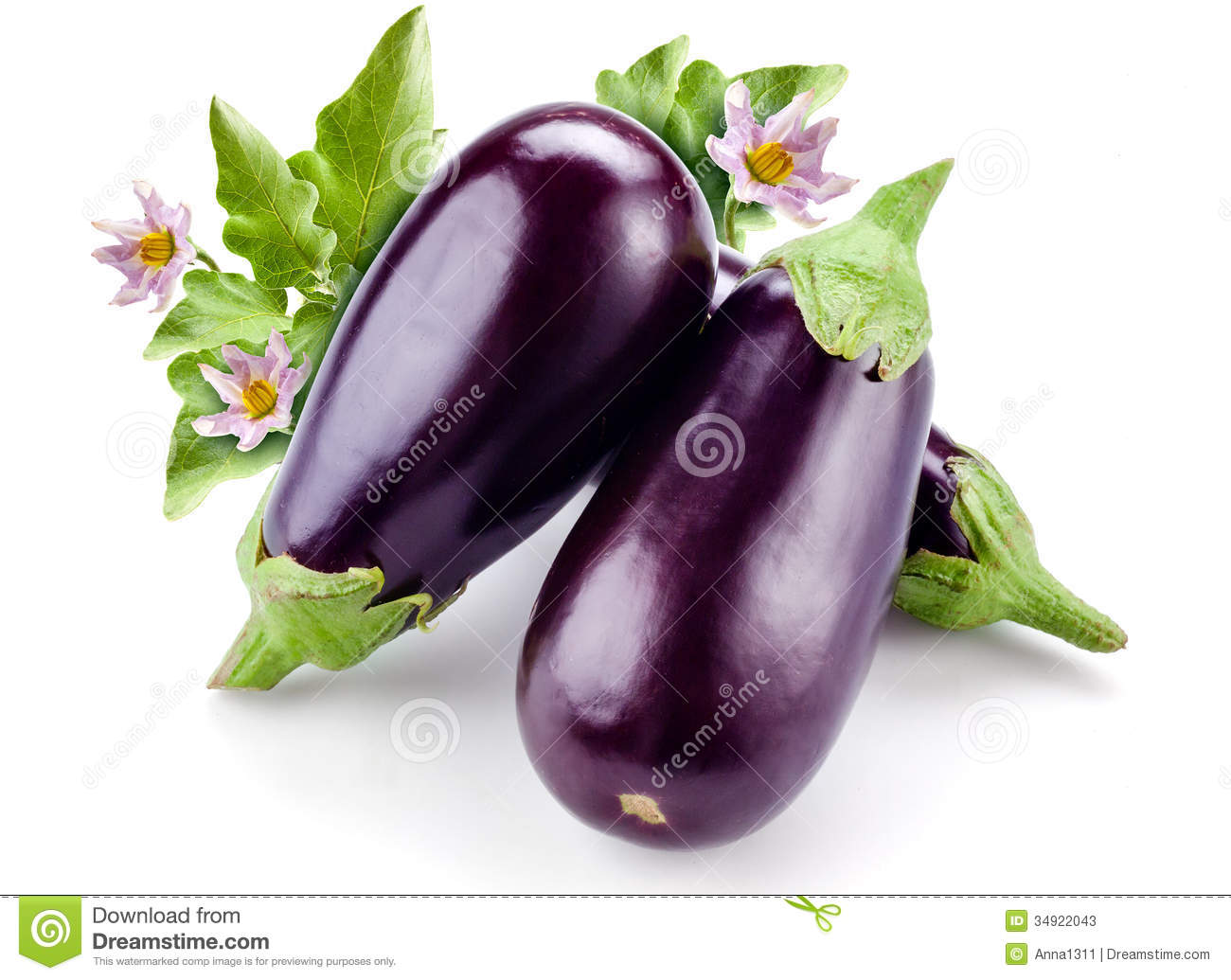 Eggplant With Leaves And Flowers Isolated On White Stock Photos ...