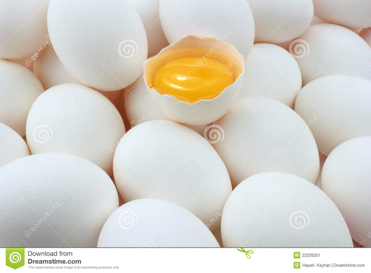 Eggs and egg yolk