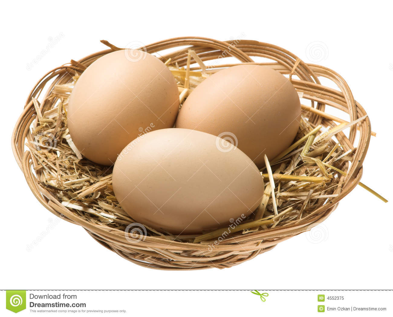 Eggs in nest clipping path