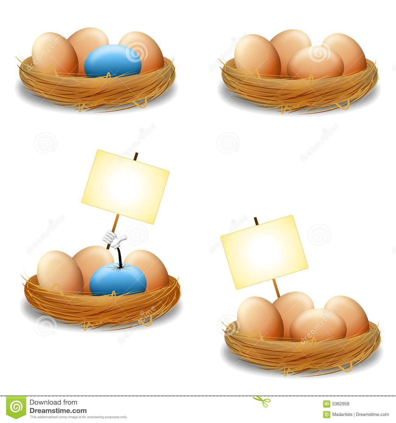 Eggs in Nest With Signs
