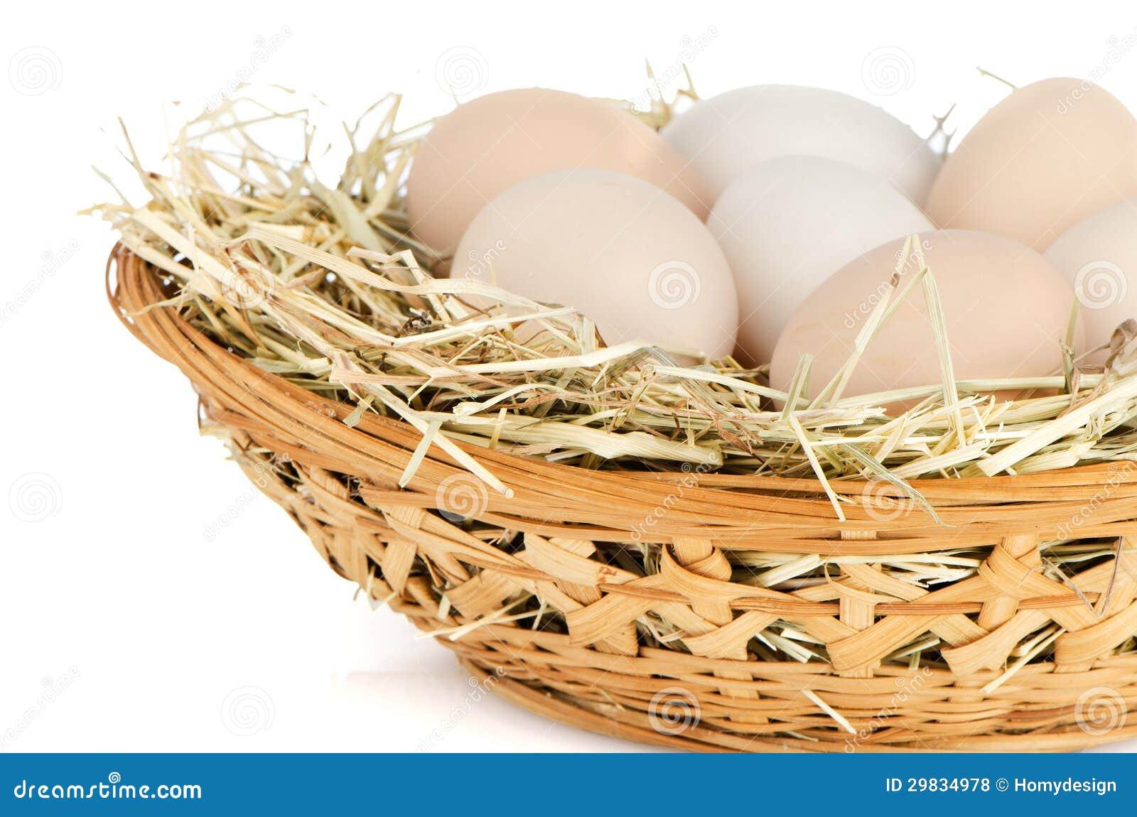Eggs o close up