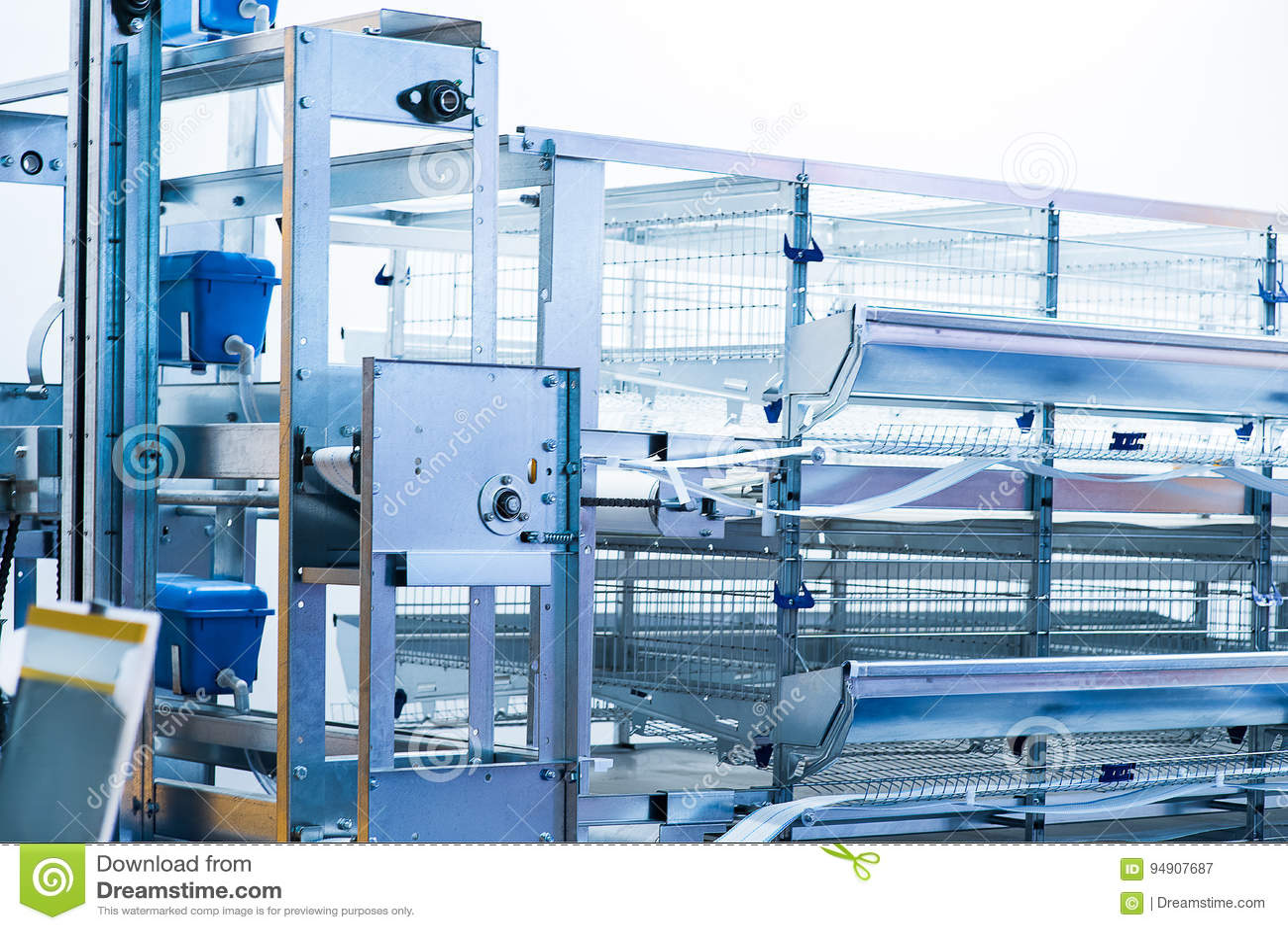 Eggs production incubator inside
