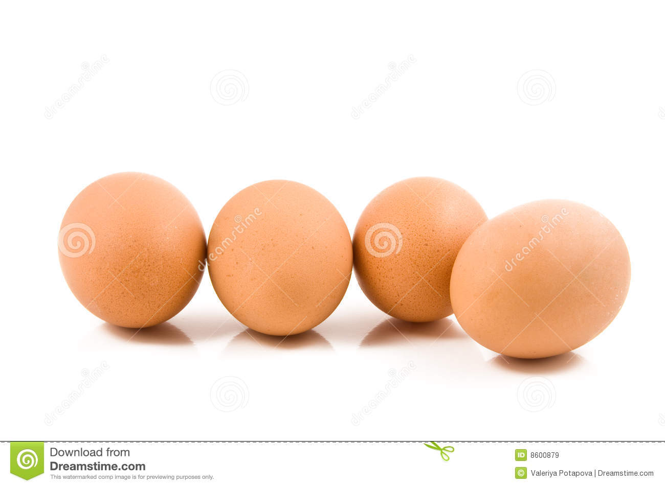 Eggs on white background