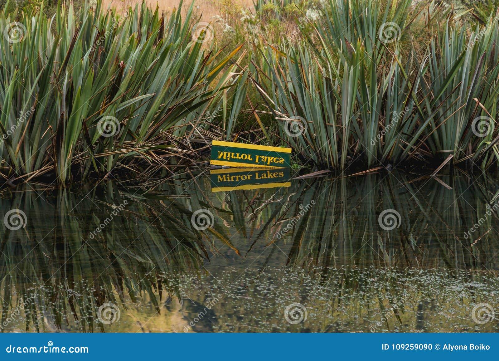 Eglinton谷,镜子湖milford路,新西兰