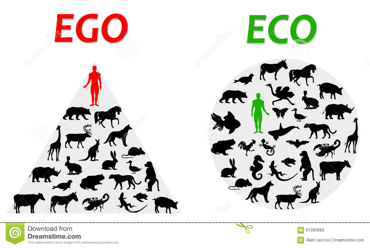Difference between an egocentric and ecological world view.