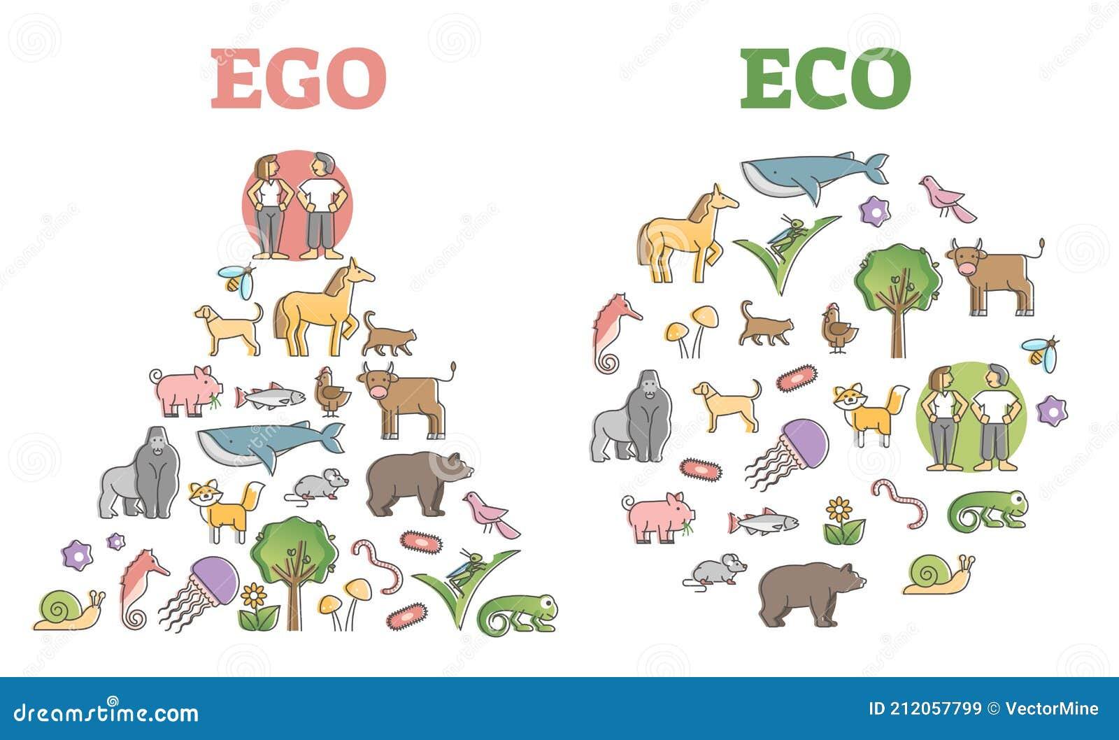 Ecosystem Diagram Vector Illustration | CartoonDealer.com ...