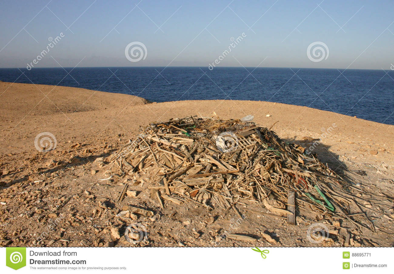egyptian eagle nest from various debris on a small island stock