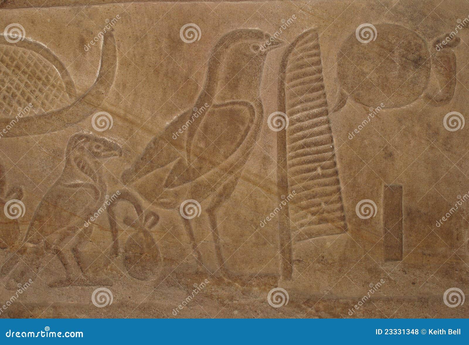 Egyptian bird hieroglyphics - photo#27