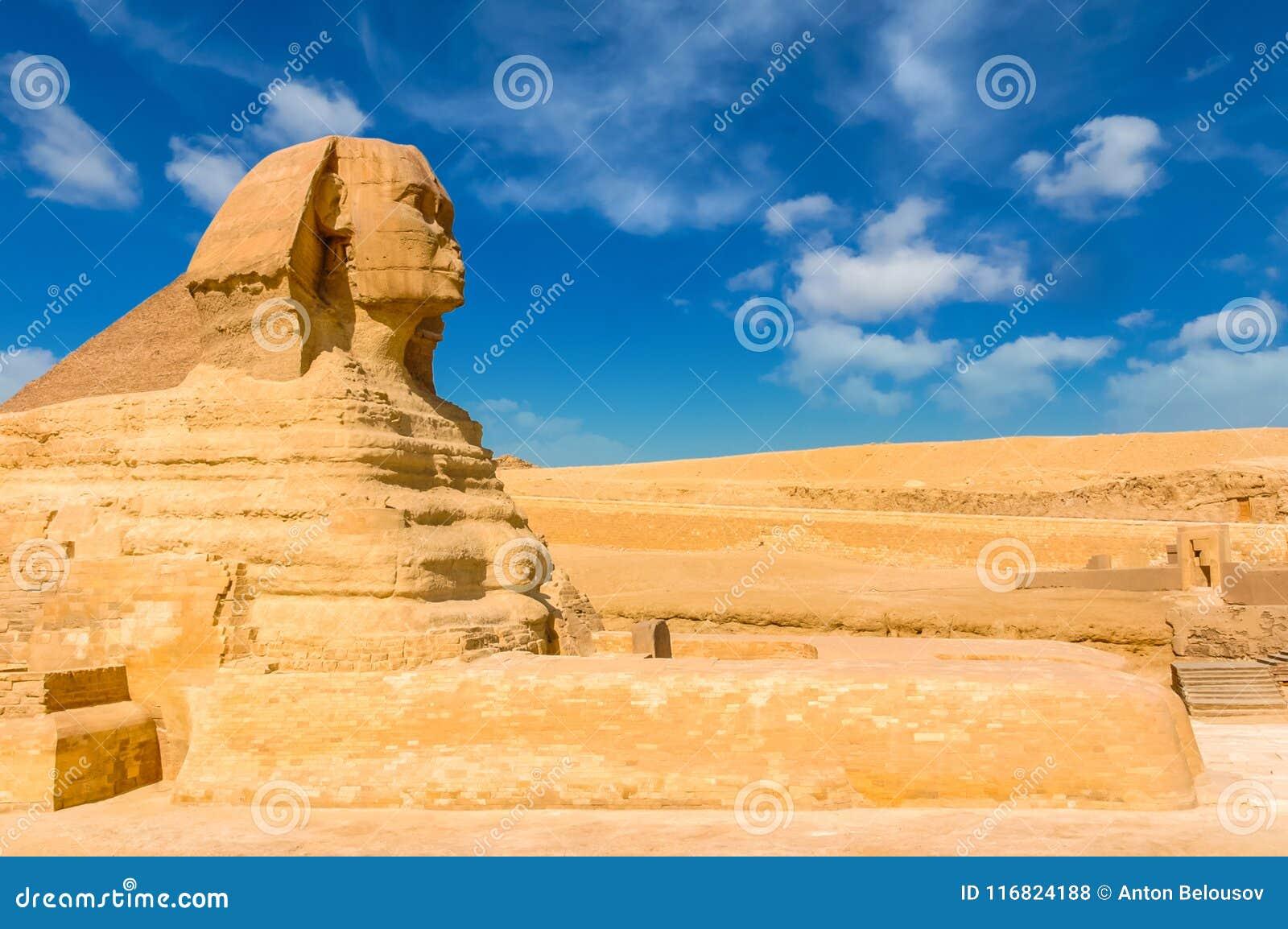 Egyptische sfinx kaïro giza Egypte De achtergrond van de reis Architec