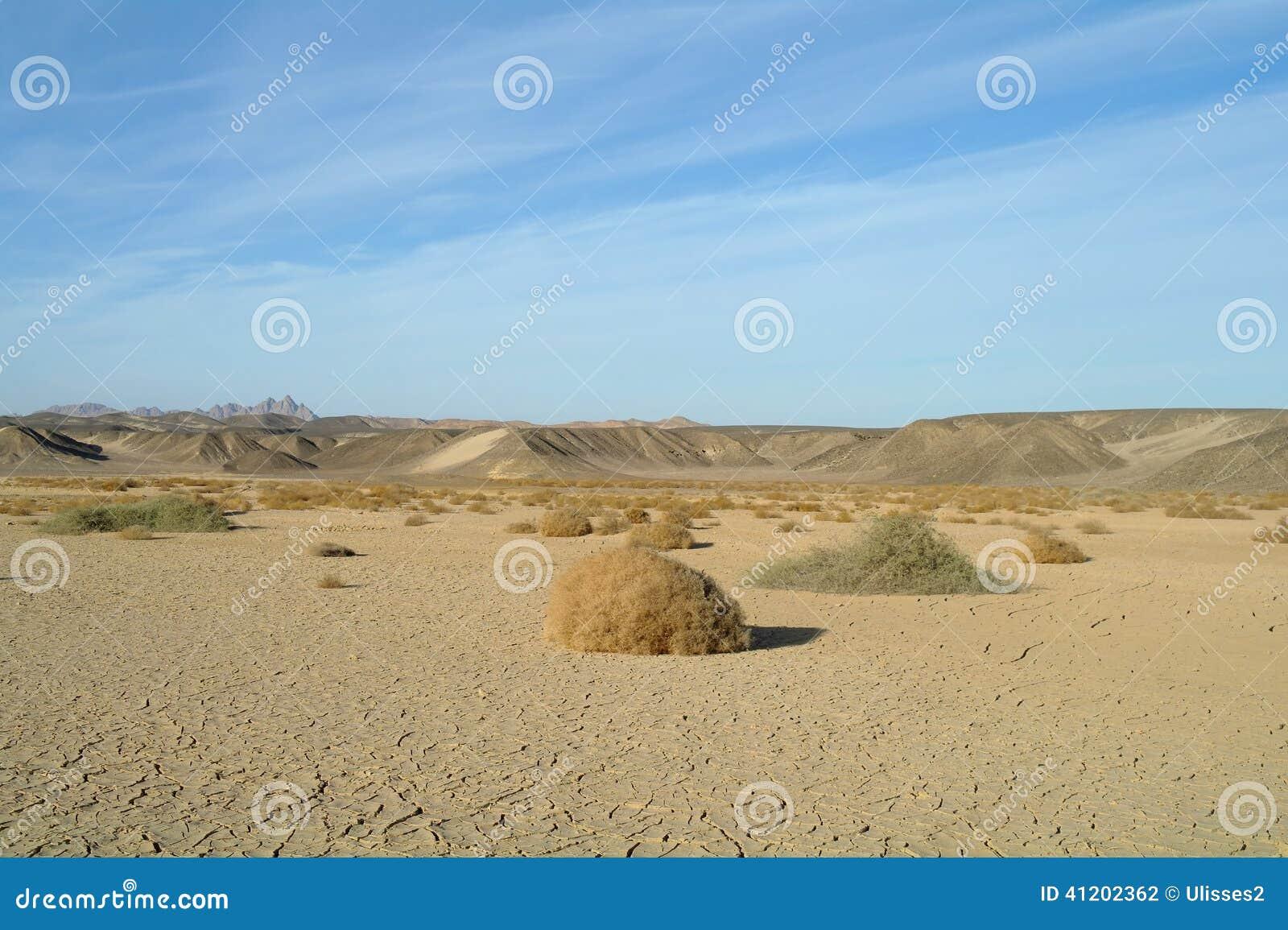 Egyptisk öken och himmel