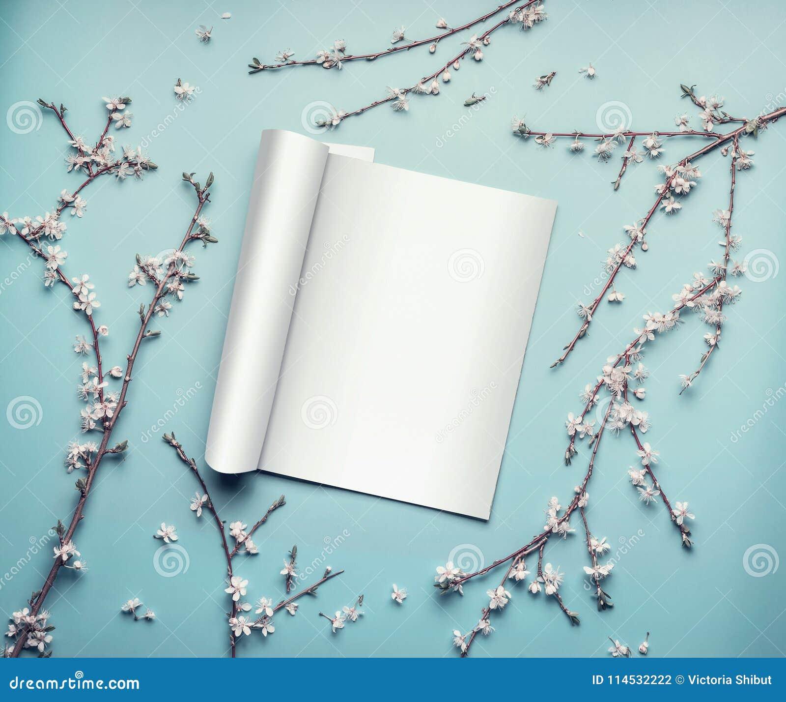 Egzamin próbny otwarty magazyn lub katalog na pastelowym błękitnym desktop z gałązkami i czereśniowym okwitnięciem