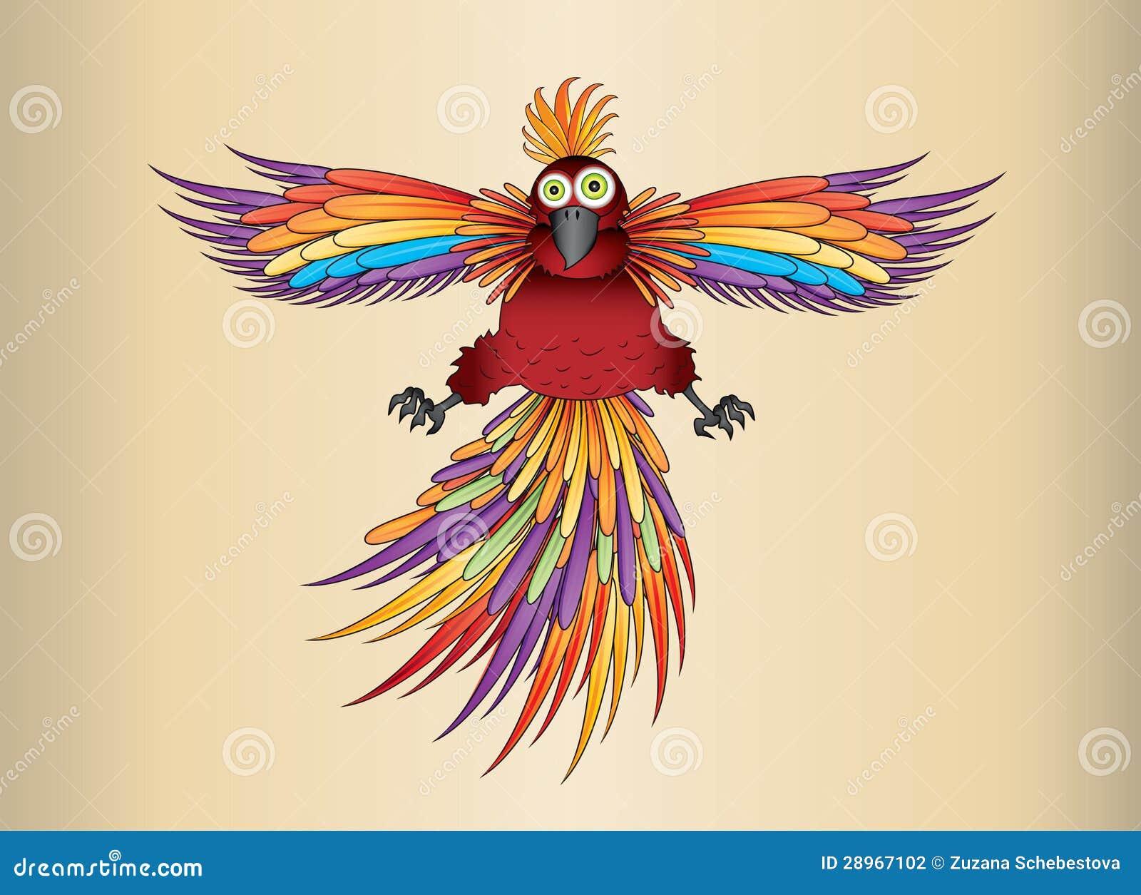 Egzotyczna papuga w tęcza kolorach