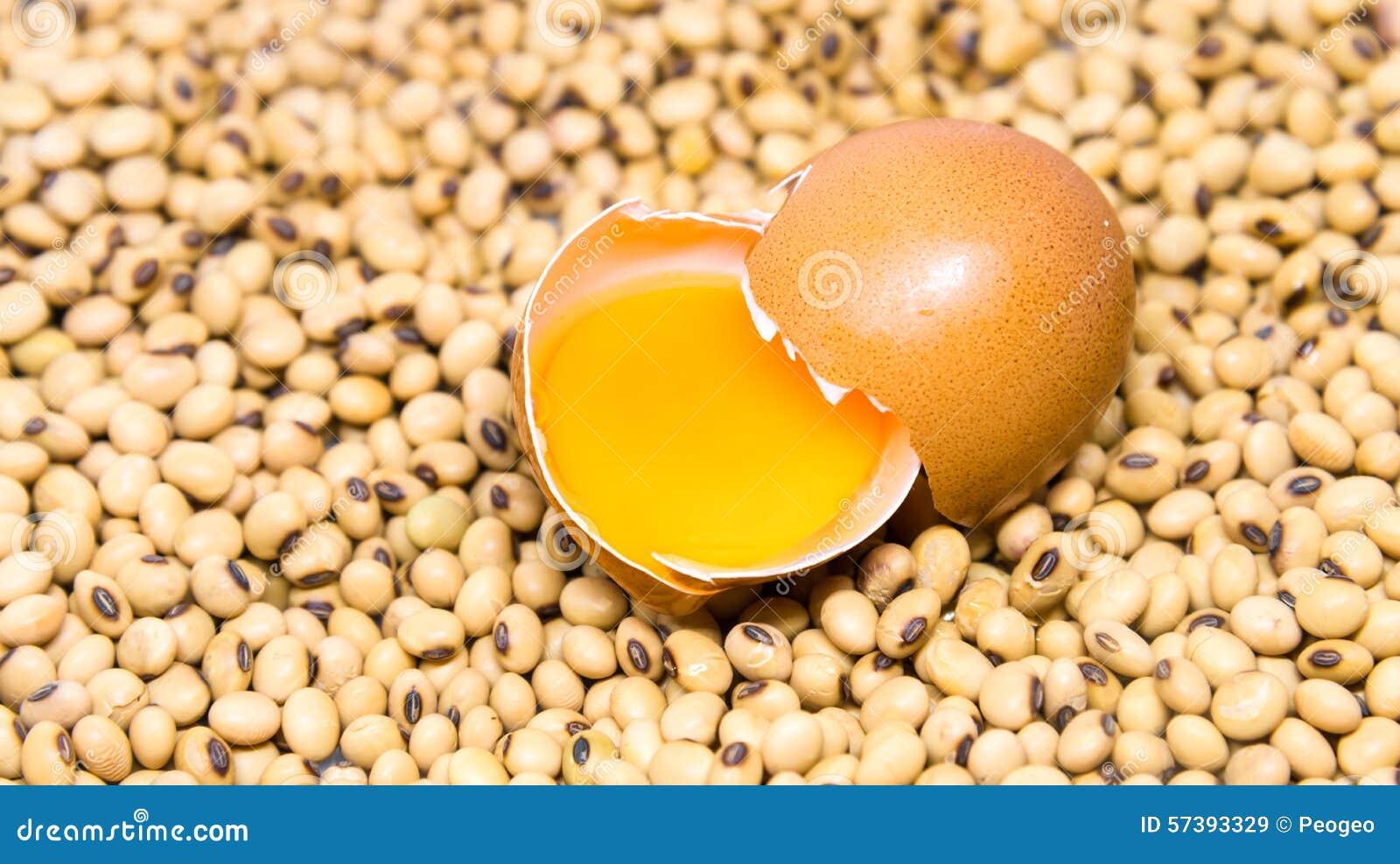Ei op de achtergrond van sojabonen